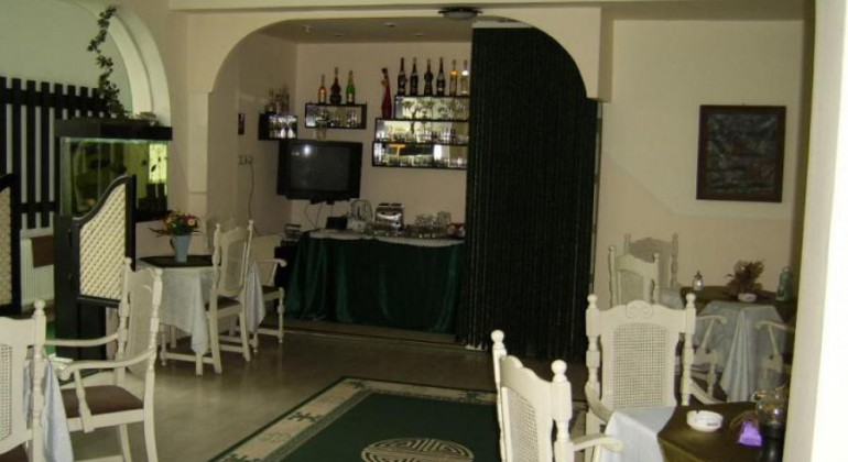 Vila Monica Targu Mures